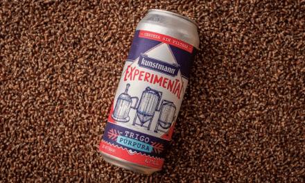 Valdivianos elaboran nueva cerveza con poder antioxidante