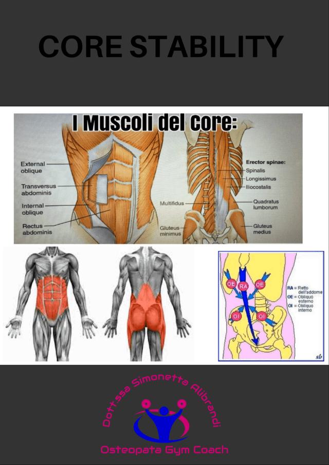 simonetta alibrandi osteopata roma posturologo plank postura corretta mal di schiena lombalgia esercizi addome core stability