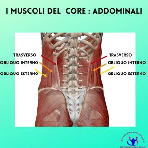 Simonetta-alibrandi-osteopata-personal-trainer-posturologo-lombalgia-cronica-mal-di-schiena-esercizi-core-stability-i-muscoli-del-core-_-addominali