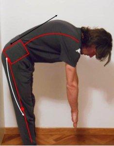 simonetta-alibrandi-osteopata-posturologo-personal-trainer-postura-scorretta-lavorativa-mal-di-schiena-basso-cervicalgia-lombalgia-stretching-catena-muscolare-posteriore