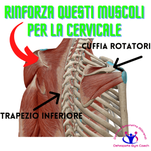 Simonetta-alibrandi-Osteopata-posturologo-personal-trainer-male-al-collo-vertigini-sbandamenti-cervicalgia-esercizi-efficaci-rimedi-trapezi-romboidi Total body Postural Adjustment