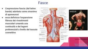 Simonetta-Alibrandi-Osteopata-personal-trainer-posturologo-total-body-postural-Adjustment-tessuto-connettivo-muscoli-esercizi-posturali-Mezieres-postura-corretta