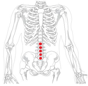 l'ostéopathie traite efficacement les lombalgies