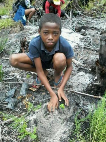 Pflanzeinsatz Tampolo/Madagaskar