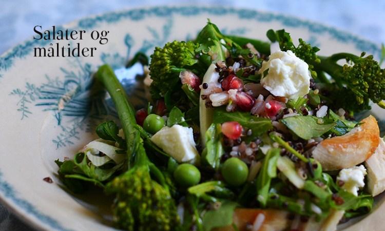 Salat og mad
