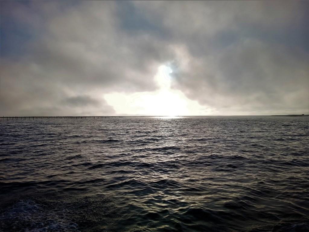 le soleil perdu derrière le brouillard de l'étang de Thau