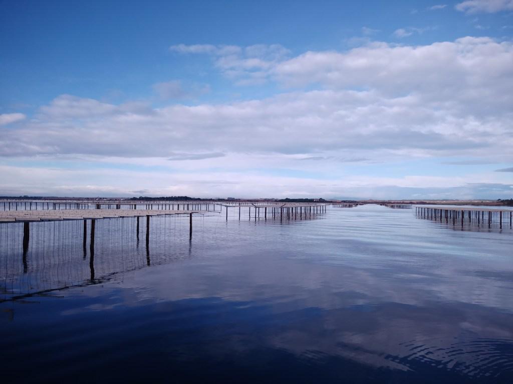 vue de l'étang de Thau