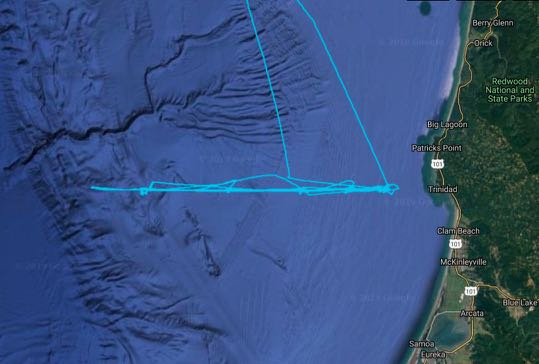 Screen shot of Ship Tracker showing how the R/V Atlantis moves along a transect line
