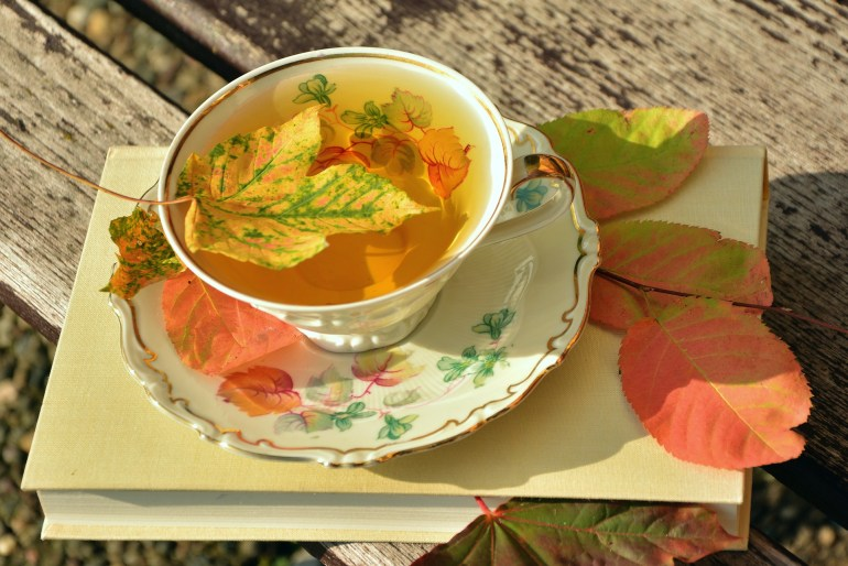 Cup of tea sitting on a book - with autumn leaves in the tea and leaves on the book.
