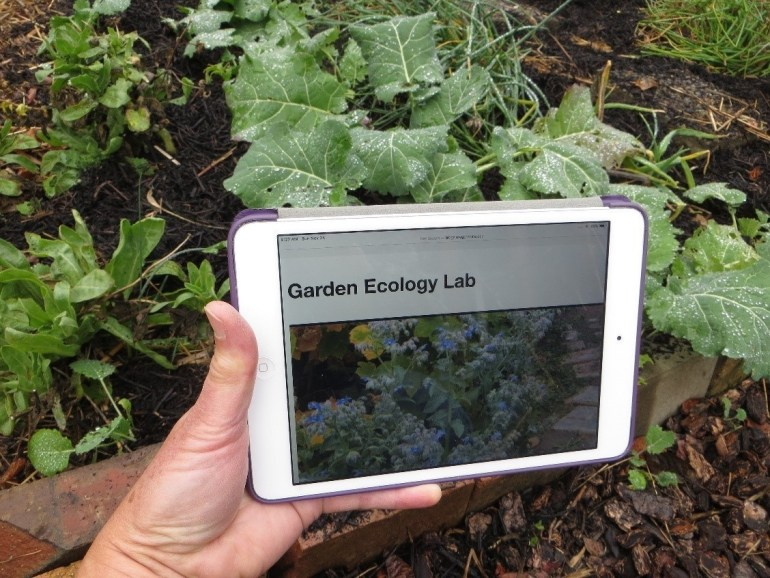 Hand holds I-pad which has a photo of kale and the title 'Garden Ecology Lab'.
