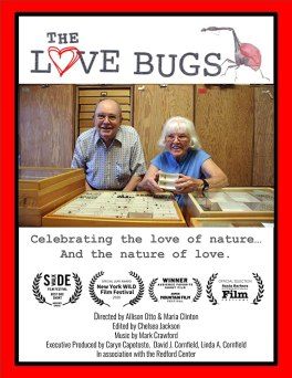 Promotional poster for the film Love Bugs. Photo of subject of the film. A man and a woman standing with their insect collection.