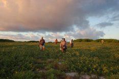 Our restoration team on Kure atoll