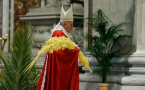 POPE PALM SUNDAY