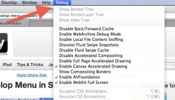 stop safari auto refreshing web pages in mac os x lion