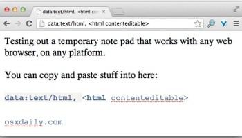 How to Copy & Paste on iPad