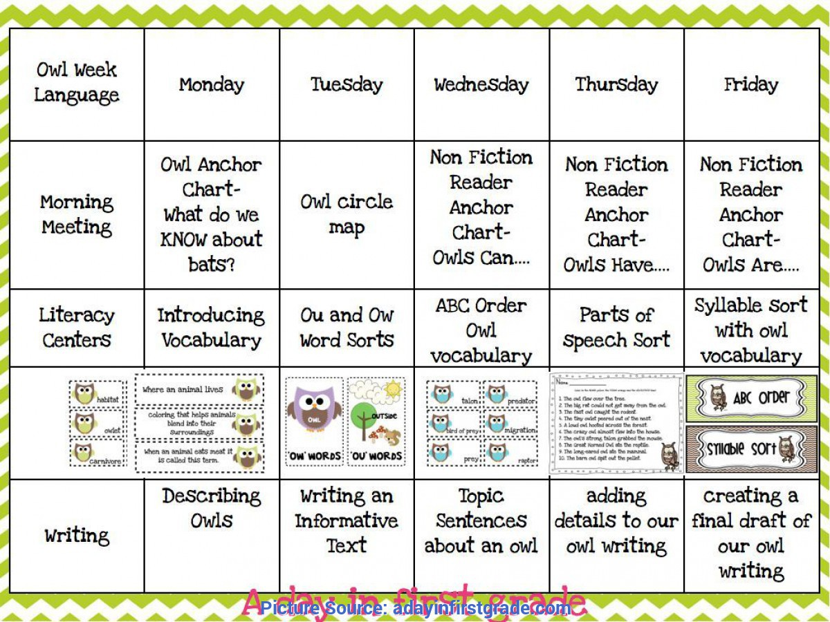 Fresh Daily Lesson Plan Template Worksheets For All
