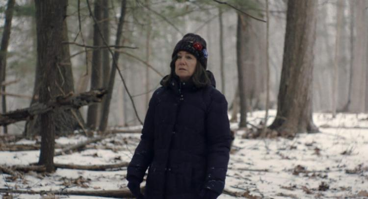 Diane andando perdida na neve