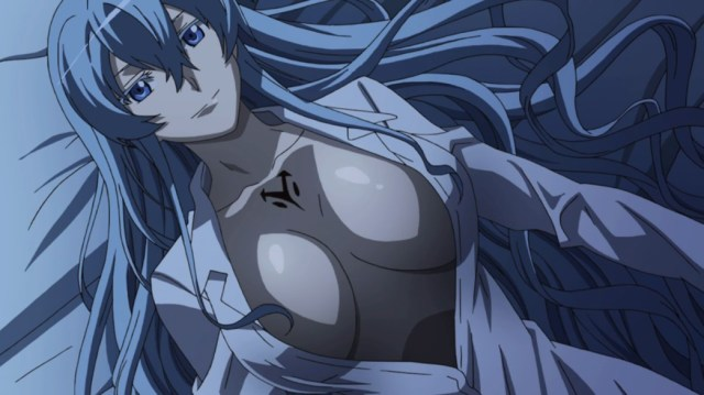 Akame ga Kill Episode 10 Esdeath thinking of Tatsumi
