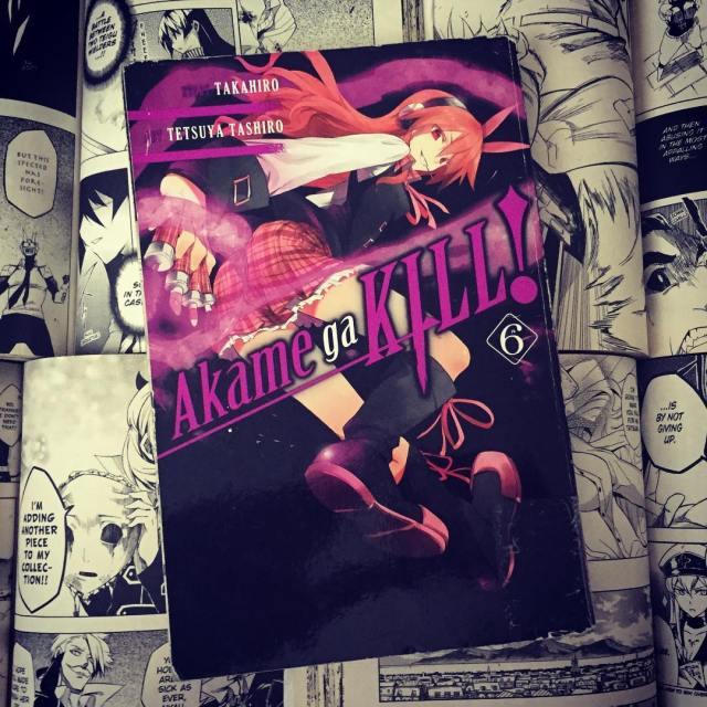 Akame ga Kill Volume 6 Cover