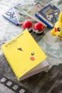 La Grande Aventure de Pikachu (3)