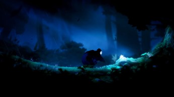Ori and the Blind Forest (13)