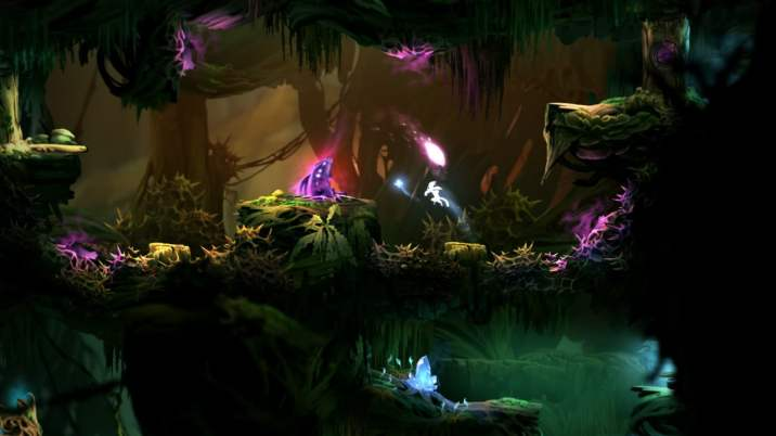 Ori and the Blind Forest (16)