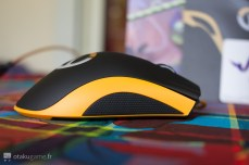 Razer Deathadder Chroma Overwatch