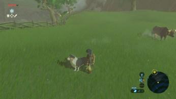 Zelda Breath of The Wild (2)