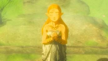 Zelda Breath of The Wild (21)