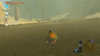 Zelda Breath of The Wild (26)