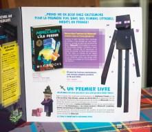 Présentation de Minecraft et du livre officiel de Minecraft !