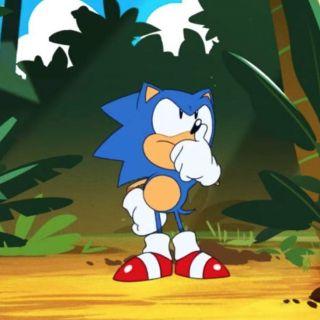 Même Sonic se demande si c'est une bonne idée...