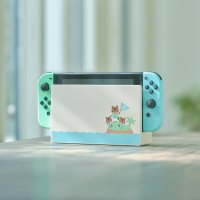 La magnifique Nintendo Switch édition collector New Horizons !