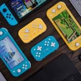 Ces manettes sont des manettes 8bitdo pour Switch lite ^^ !
