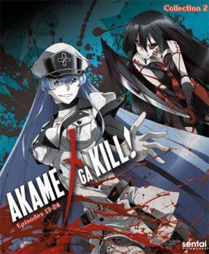 6 Anime Like Akame Ga Kill!