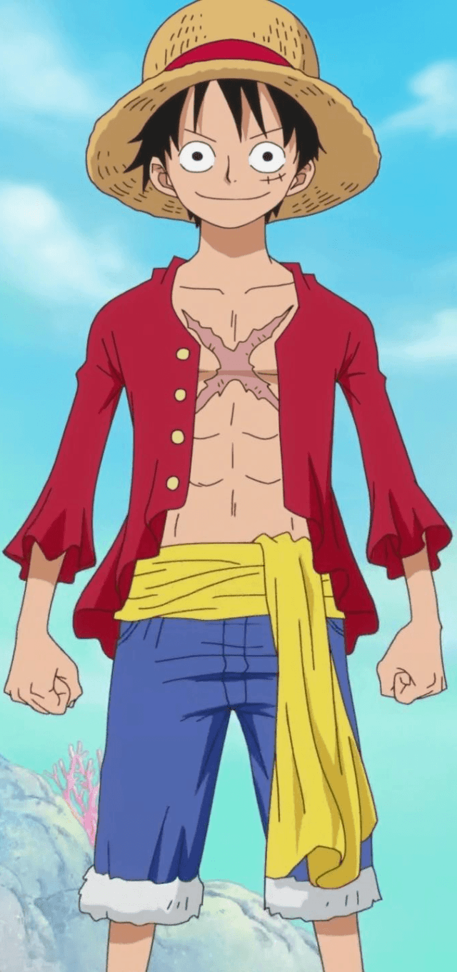 Monkey_D._Luffy_Anime_Post_Timeskip_Infobox