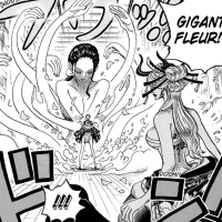 One Piece Chapter 1020: Nico Robin takes on Black Maria