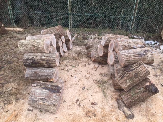 【薪づくり】山師の土場に行ってもう全部、切ってきました。