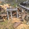 枝薪きってます