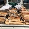未乾燥薪の納品 今シーズンはストーブ用の薪納品は最後ですね。