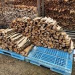 【薪の移動】割った薪を邪魔にならないところに移動する。