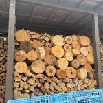 【半端針葉樹とか】皮を剥いた玉を薪棚に並べて乾燥させる