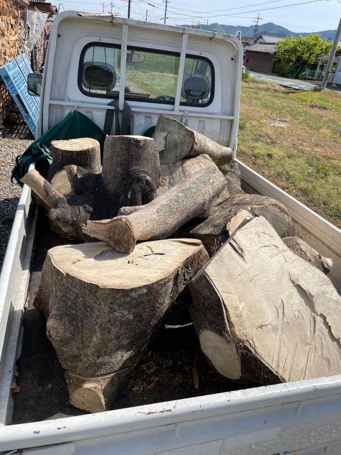 【自宅用薪】薪仲間が手を焼いていた巨大なモチをもらう