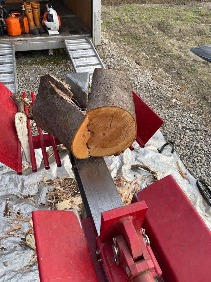 【玉全部割る】ケヤキをわりと細めに割った。