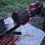 【20トンマシンで】カシを割る
