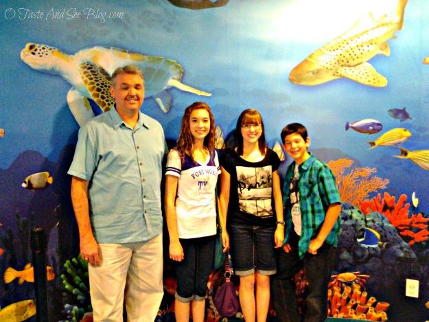 Sea Life Aquarium 6