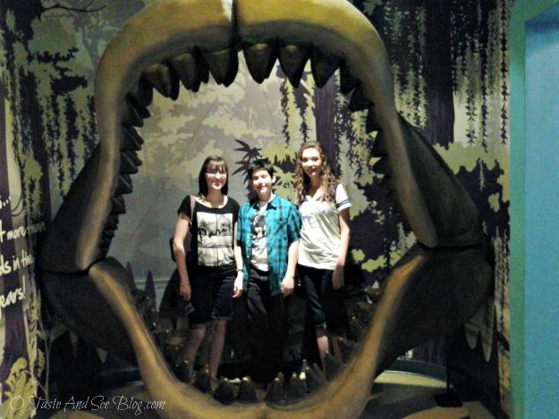 Sea Life Aquarium 8