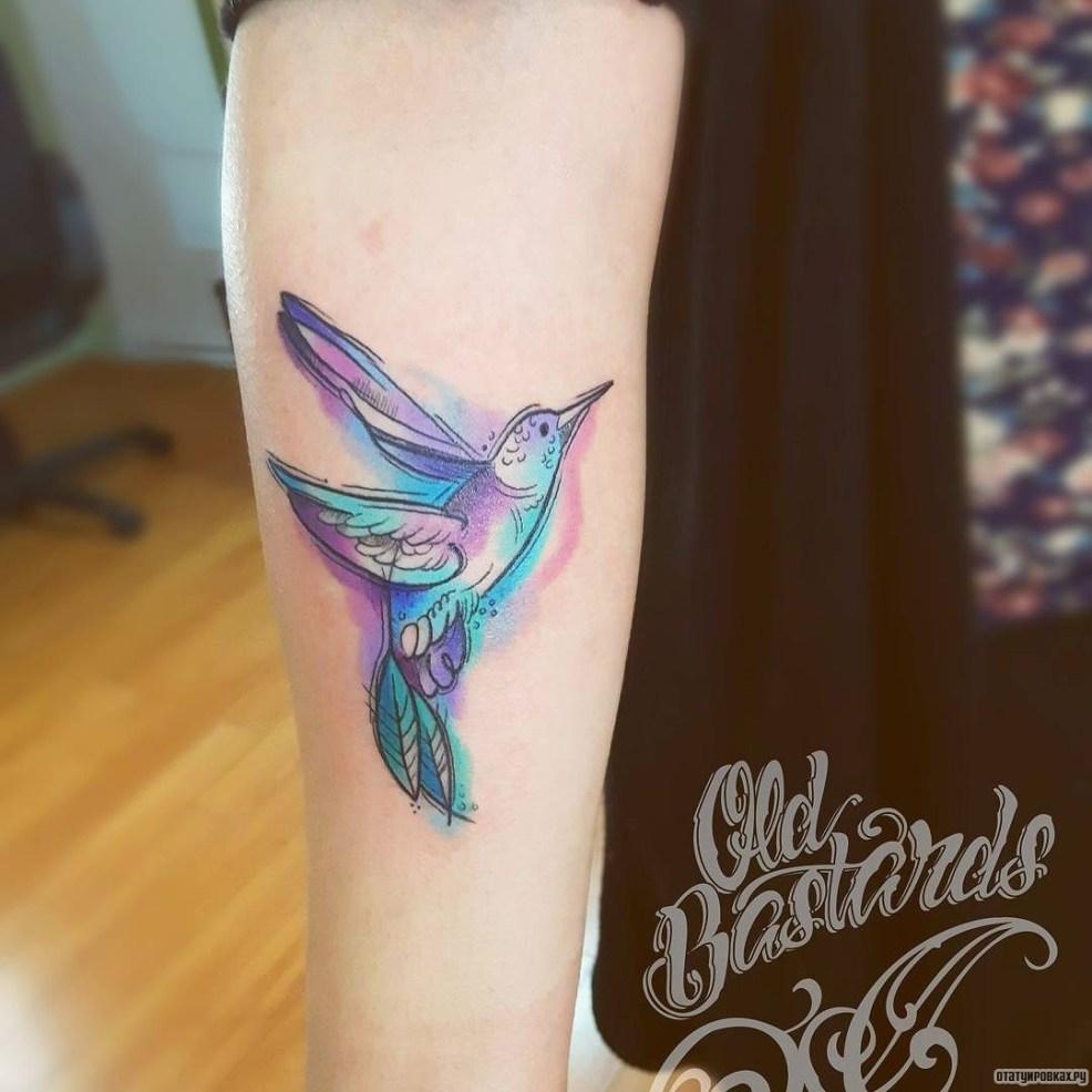 тату колибри 61 фото татуировки эскизы значение мужских и женских
