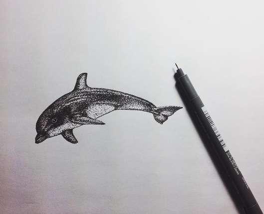 delfin oyin