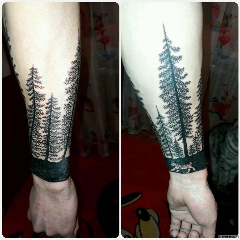 лес из елок с животным тату на предплечье у парня добавлено